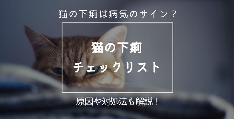 【猫が下痢をするのは病気のサインかも!】チックリストから見る危機判断