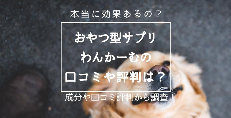 【わんかーむは効果ない?】愛犬用のおやつ型サプリの評判は?