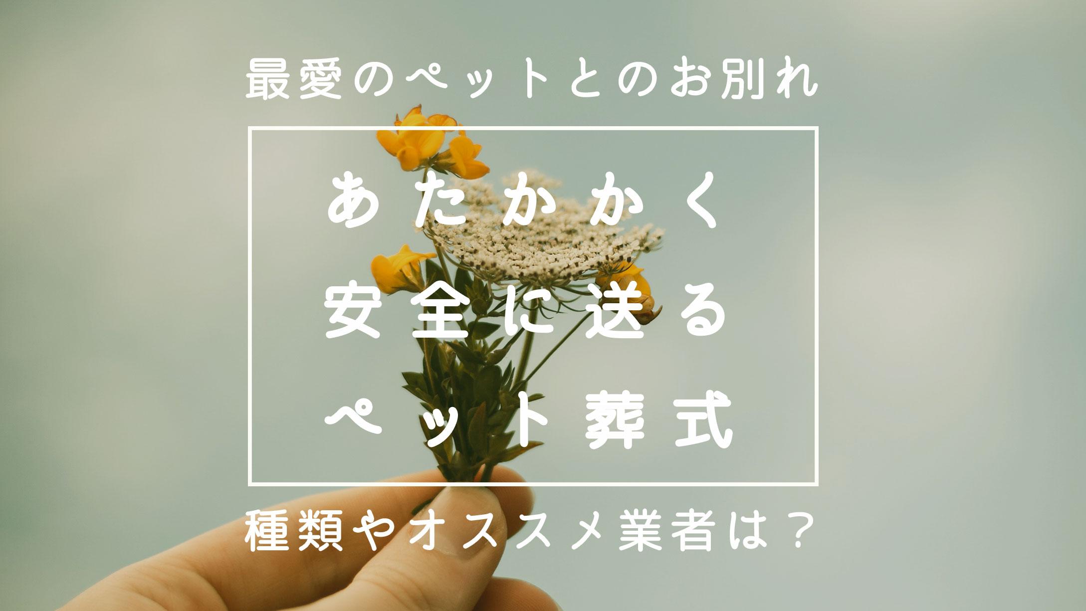 15_pet-sousiki