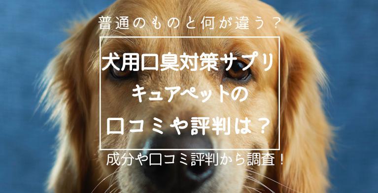 【犬用口臭対策サプリ】キュアペットの口コミや効果とは?