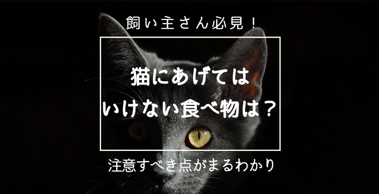 【猫に与えてはいけない食べ物とは?】絶対に注意すべき食べ物と対策